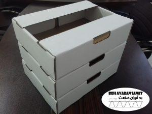 جعبه کارتن کیوی