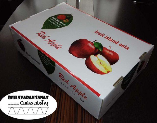کارتن سیب صادراتی