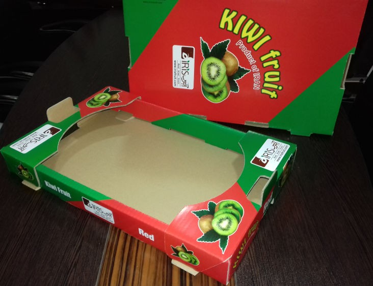 جعبه کارتن کیوی تک ردیفه