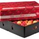 صادرات سیب