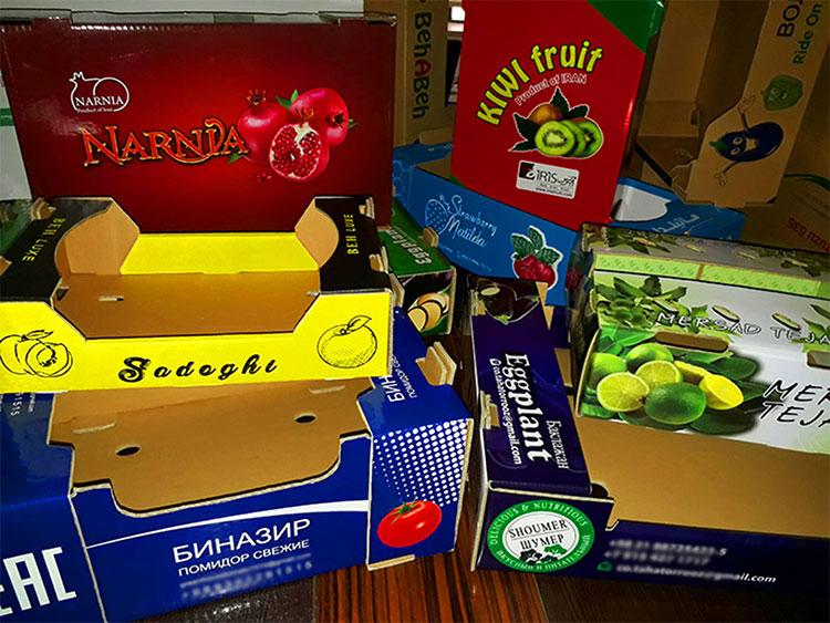 نمونه های از کارتن میوه